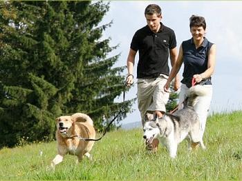 Hotel Hunde willkommen Wanderung mit Hund